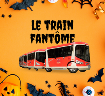 Lyon City Tram - Halloween